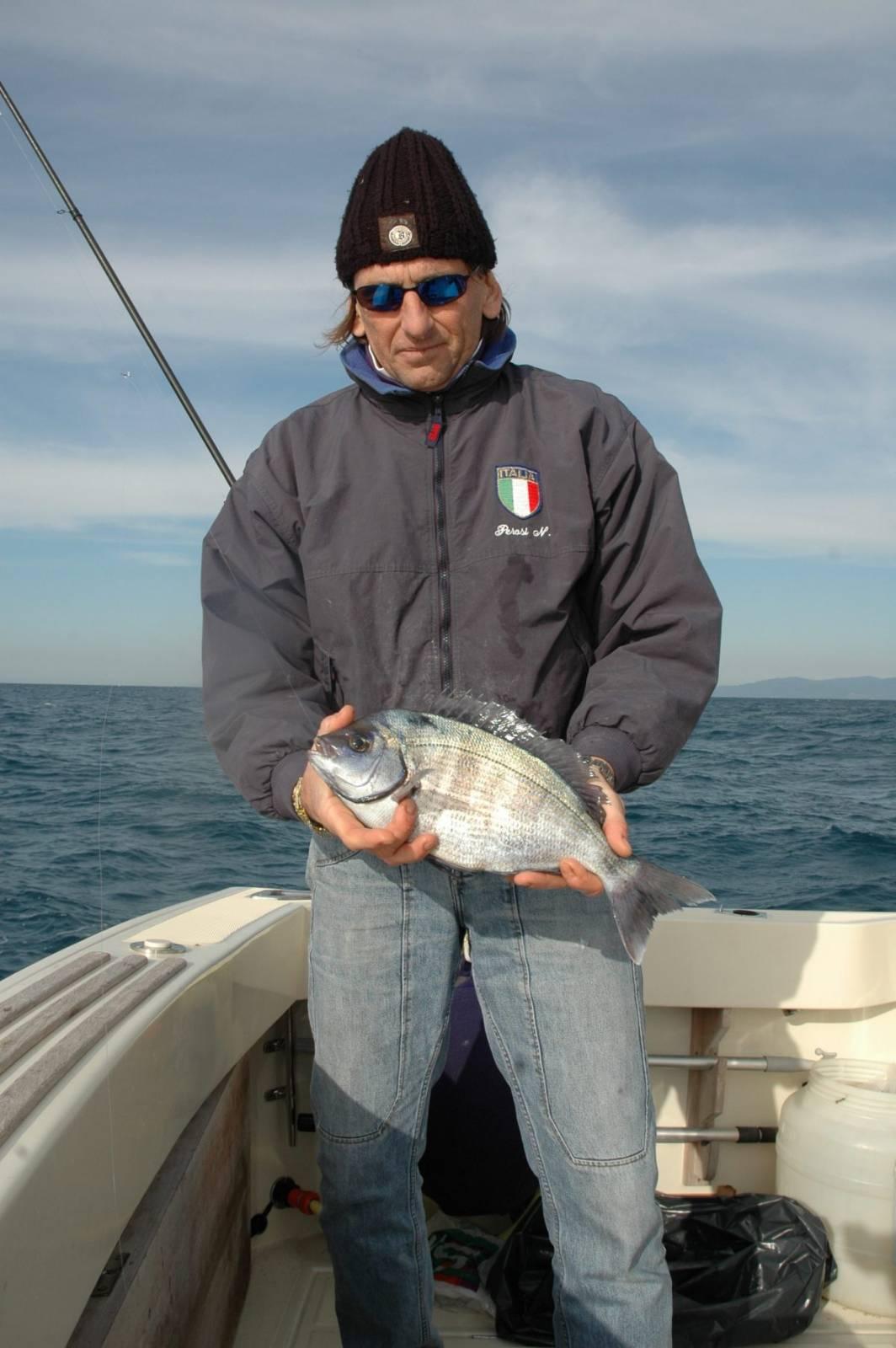 La tanuta è un pesce prettamente invernale che si raduna in grossi branchi nel periodo tra gennaio ed aprile