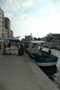 Canale Burlamacco