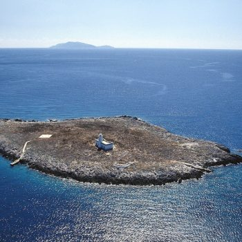 La formica grande con sullo sfondo l'isola del Giglio (si ringrazia Oean 4 future)