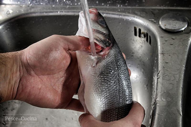 la-pulizia-del-pesce-lavare-il-pesce-fase-1