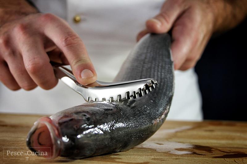 la-pulizia-del-pesce-squamatura-del-pesce-fase-2
