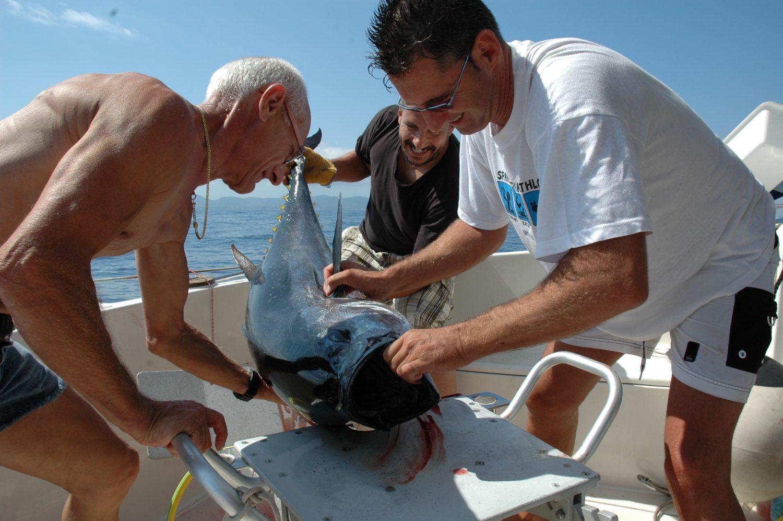 La pesca del tonno è sicuramente una delle tecniche pèiù emozianti da praticare su una barca che effettua charter e scuola di pesca