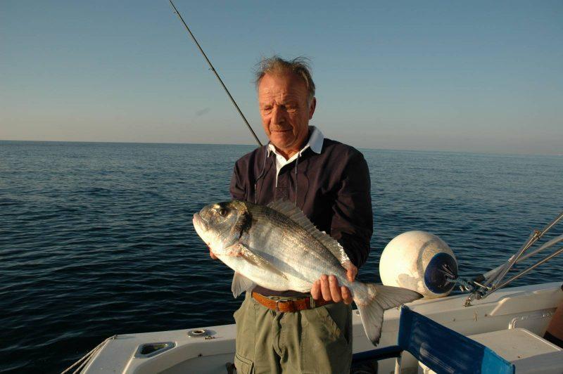 L'la splendida livrea dell'orataorata dalla barca è una preda classico, molto ricercata