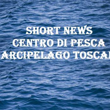 short news