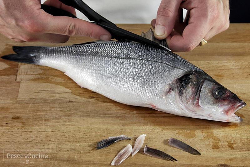 la-pulizia-del-pesce-sbarbatura-del-pesce-fase-2